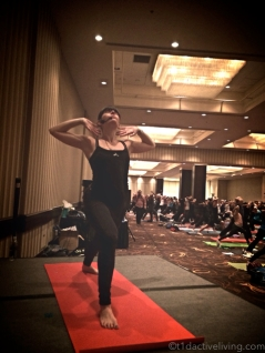 Lisa Greenbaum, YogaFit Canada director working her magic at Power of Movement.