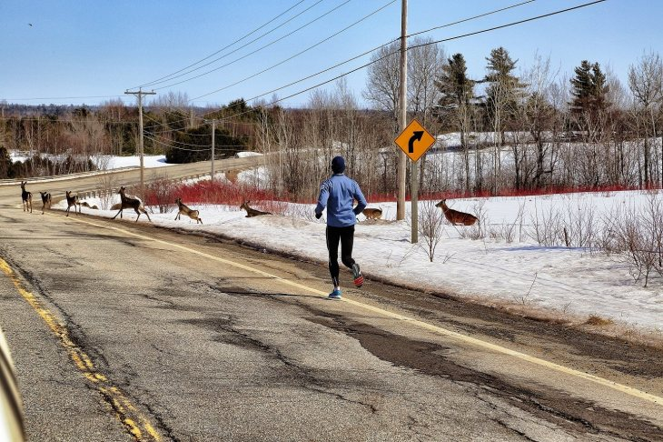 Sebastien wished for company during his run, but he didn't say who! |Courtesy Outrun Diabetes |